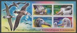 "TAAF Bloc YT 24 "" Oiseaux, Albatros D'Amtersdam "" 2010 Neuf** - Blocs-feuillets"
