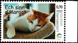 2016 Chat, Katze, Cat, Timbre Personnalisé, Ech Sinn D'Margot, Michel 2019: 2092 0,70€ - Luxemburg