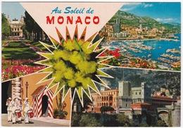 Au Soleil De MONACO - Le Casino - Le Port - La Garde Du Prince - Le Palais - Palais Princier