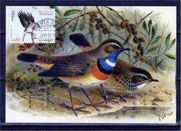 Portugal 2019 EUROPA 2019 CEPT Postal Maximo Pisco Peito Azul Algarve Maximum Maxicard Fauna Luscinia Svecica Ave Bird - Vögel