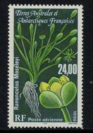 T.A.A.F. // 1998 // Poste Aérienne Timbre No.146 Y&T Neuf** Flore Antarctique - Poste Aérienne