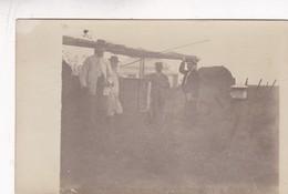 OLD POSTCARD ARGENTINE LA PAMPA 1900'S TRES ANIMEE GAUCHOS COWBOY - BLEUP - Argentine