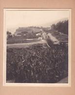 TENERIFE  Puerto De La Cruz Près Du BARRANCO De MARTIANEZ 1921  Photo Amateur Format Environ 7,5 Cm X 5,5 Cm ESPAGNE - Lugares