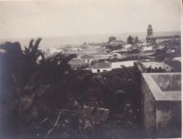 TENERIFE  Puerto Puerte De La Cruz  1921  Photo Amateur Format Environ 7,5 Cm X 5,5 Cm ESPAGNE - Lugares