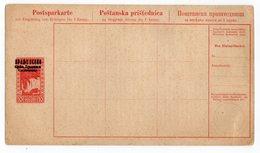 1919 KINGDOM OF SHS, YUGOSLAVIA, POST SAVING CARD, POSTSPARCARTE, VERY RARE, POSTAL STATIONERY - Postal Stationery