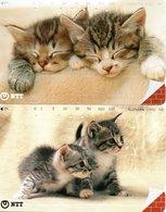 2 Télécartes Japon Japan Chat Cat  Katze Phonecard (D 572) - Gatos