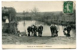 Ferme Du Haut Samoreau L'Abreuvoir - France