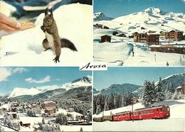 Arosa (Grisons, Svizzera) Vues: Eichhornchen, Weisshorn, Untersee, Rhatische Bahn - GR Grisons