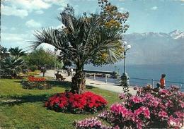 Locarno (Tessin, Svizzera) Lungolago E Giardini, Lake Front And Gardens, Avant Lac Et Jardins - TI Tessin