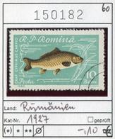 Rumänien - Roumanie - Romina - Rominia - Michel 1927 -  Oo Oblit. Used Gebruikt - Fische Fishes - 1948-.... Republiken