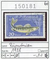 Rumänien - Roumanie - Romina - Rominia - Michel 1928 -  Oo Oblit. Used Gebruikt - Fische Fishes - 1948-.... Republiken