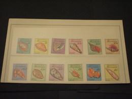 MICRONESIA - 1989 CONCHIGLIE 12 VALORI - NUOVI(++) - Micronesia