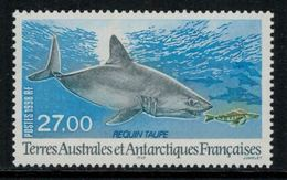 T.A.A.F. // 1998 //  No.228 Y&T Neuf**  Faune Antarctique, Le Requin Taupe - Neufs