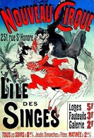 @@@ MAGNET - Nouveau Cirque  L'île Des Singes - Advertising