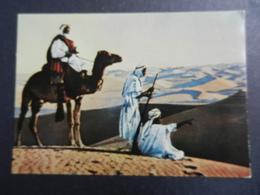 19944) NEGED NOMADI DEL DESERTO CARTOLINA PUBBLICITARIA FARMACEUTICA - Costumi