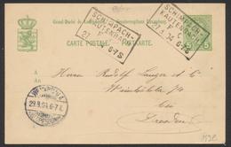 """Entier Du Luxembourg Type 5cent Vert Cachet Rectangulaire """"Schimpach-Kautenbach"""" (1904) Vers Dresde / Ambulant - Entiers Postaux"""