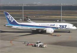 ANA ALL - Nippon Airways B787 JA818A - 1946-....: Era Moderna