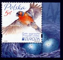 "POLAND/Polen/Polska, EUROPA 2019 ""National Birds""  Set 1v** - 2019"