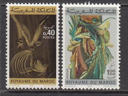1980 Morocco Maroc Art Paintings   Complete Set Of 2 MNH - Marocco (1956-...)