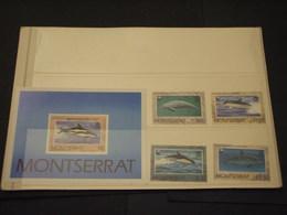 MONTSERRAT - 1990 PESCI  VALORI + BF - NUOVI(++) - Montserrat