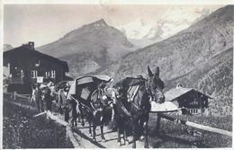 En Valais - Chevaux - VS Valais
