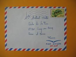 Lettre De La Réunion CFA  1974  N° 399 Caméléon Protection De La Nature De Sainte Clotilde Pour La France - Reunion Island (1852-1975)
