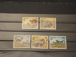 LESOTHO - 1977 WWF FAUNA 5 VALORI - NUOVI(++) - Lesotho (1966-...)