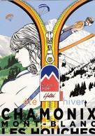 Chamonix-Mont-Blanc - Les Houches - été Hiver - Chamonix-Mont-Blanc