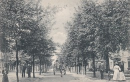 Spa Avenue Du Marteau - Postcards