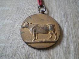 Médaille Agricole Nivelles  Concours National Ruban Rouge - Belgique