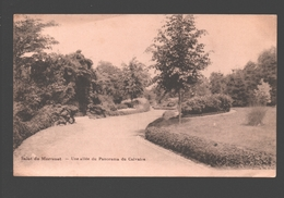 Moresnet - Salut De Moresnet - Une Allée Du Panorama Du Calvaire - éd. Mostert - Willems, Moresnet - Plombières