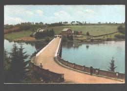 Robertville - Le Pont De Waterloo - Syndicat D'Initiative De Robertville - Colorisée - Waimes - Weismes