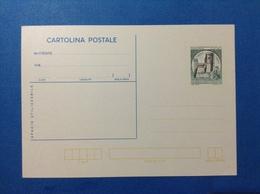 1981 ITALIA CARTOLINA POSTALE NUOVA MNH** CASTELLO ROCCA ALDOBRANDESCA PIANCASTAGNAIO 200 LIRE - Interi Postali