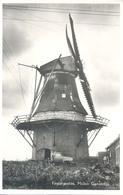 Finsterwolde, Molen Ganzedijk - Pays-Bas