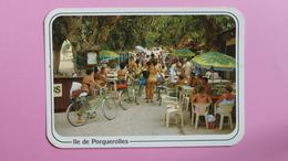 ILE DE PORQUEROLLES - Place De L'église - Porquerolles