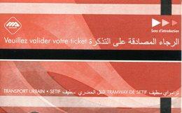 Tramway De Sétif  (Algérie) - Tramways