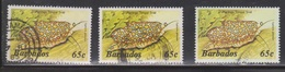 BARBADOS Scott # 653, 653c, 653d Used - Marine Life - Flamingo Tongue Snail - Barbados (...-1966)