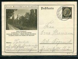 Deutsches Reich / Bildpostkarte > HOHEN NEUDORF Steg-Stempel Berlin-Wilhelmsruh (18110) - Ganzsachen