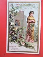 CHROMO Doré - Café Des Gourmets TREBUCIEN - Langage Des Fleurs Liseron - Modestie - Tè & Caffè