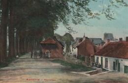MAESEYCK (Maaseik) -  Fraai Zicht Van De Everstraat - Mooie Animatie - Kleurkaart - Uitg. Vanderdonck - 1911 - Maaseik