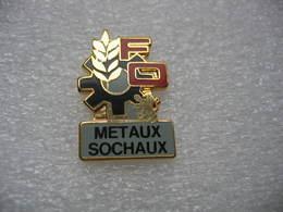 Pin's Du Syndicat FO Des Métaux Aux Usines Peugeot à Sochaux - Administrations