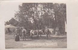 AK Foto Jeschin Und Polnischer Pfarrer - Bauern Kuh Pferdefuhrwerk - Polen - Ca. 1915 (41806) - Polen