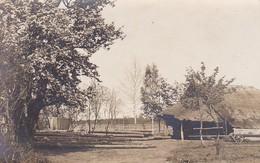 AK Kozenyaty - Holzhaus - Gefällte Bäume - Belarus - Ca. 1915 (41808) - Weißrussland