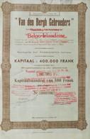 Van Den Bergh Gebroeders Wilrijk-Elsdonck Antwerpen ( Aandeel Obligation Action ) - Industrie