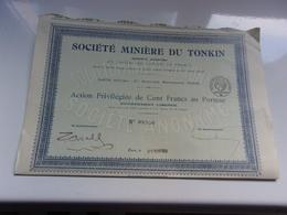 MINIERE DU TONKIN (action Privilégiée100 Francs) - Hist. Wertpapiere - Nonvaleurs