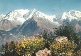 74 - Massif Du Mont Blanc Depuis Le Bettex - éd. CAP / IrIs N° PP 2889 - Chamonix-Mont-Blanc