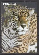 2013 Paraguay Jaguar Cat Complete Sheet MNH - Paraguay