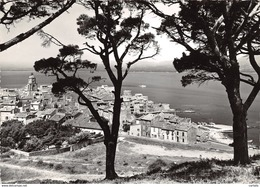 83-SAINT TROPEZ-N°272-A/0411 - Saint-Tropez