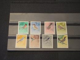 SURINAME - 1966 UCCELLI 8 VALORI - NUOVI(++) - Suriname
