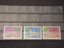 SOMALIA - 2001 CHENILLES 3 VALORI - NUOVI(++) - Somalia (1960-...)